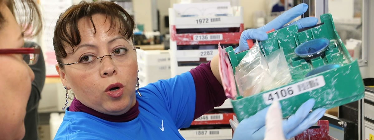 picture of person pulling stock