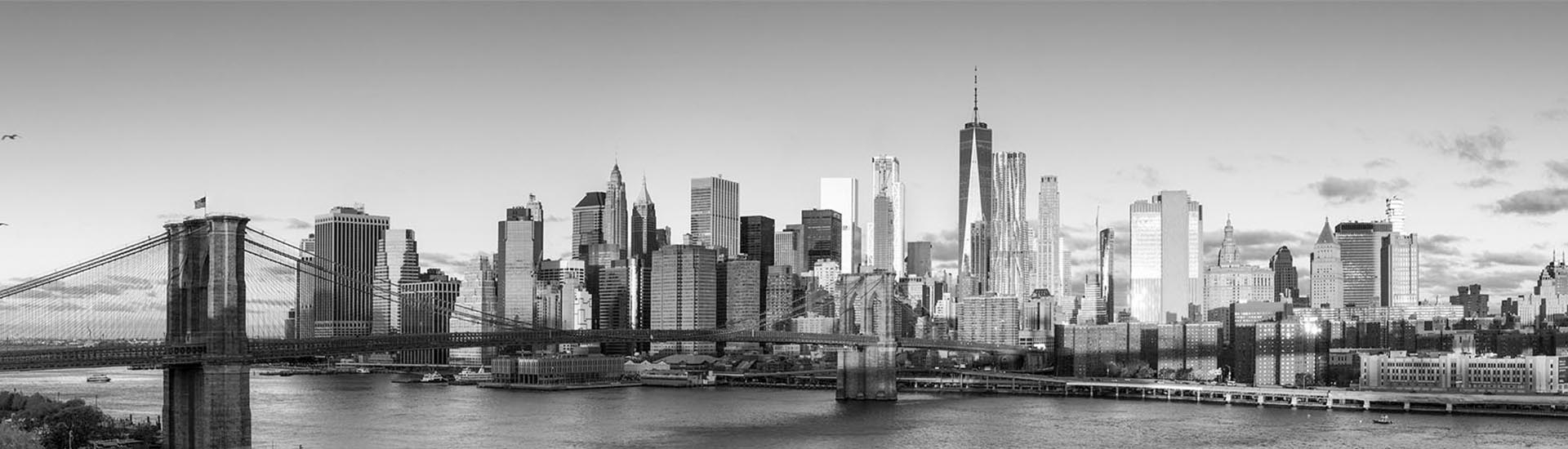 picture of new york city skyline